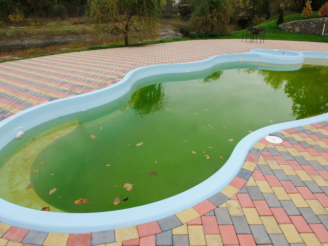 Here\'s How Easy Clean Your Green Swimming Pool - Best Pool ...