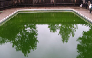 The Effect Of Phosphates In Your Swimming Pool